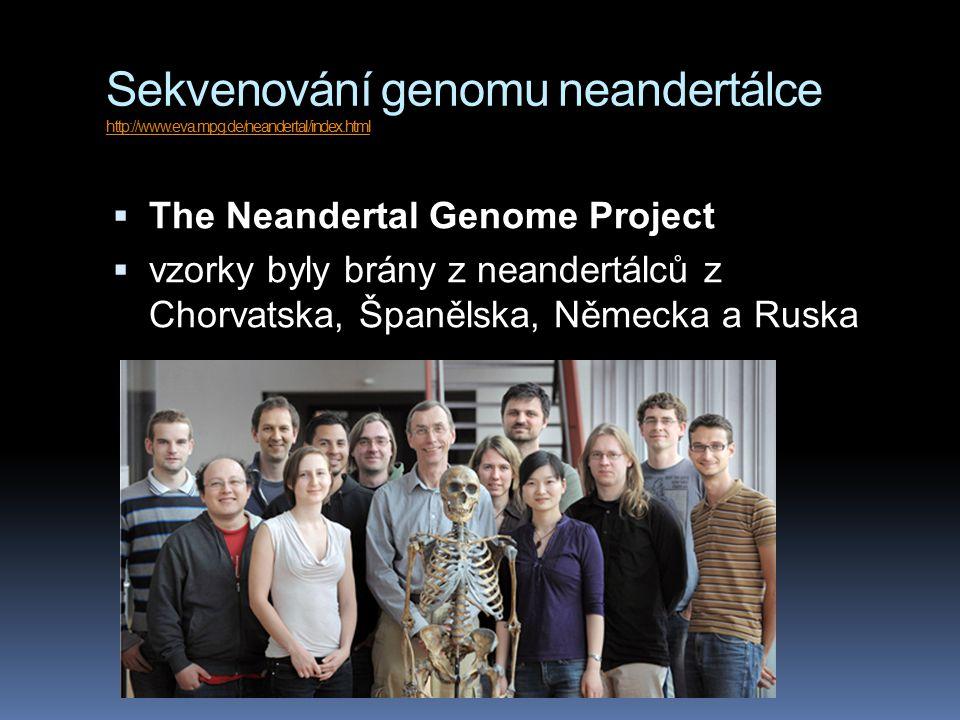 Sekvenování genomu neandertálce http://www.eva.mpg.de/neandertal/index.html http://www.eva.mpg.de/neandertal/index.html  The Neandertal Genome Project  vzorky byly brány z neandertálců z Chorvatska, Španělska, Německa a Ruska