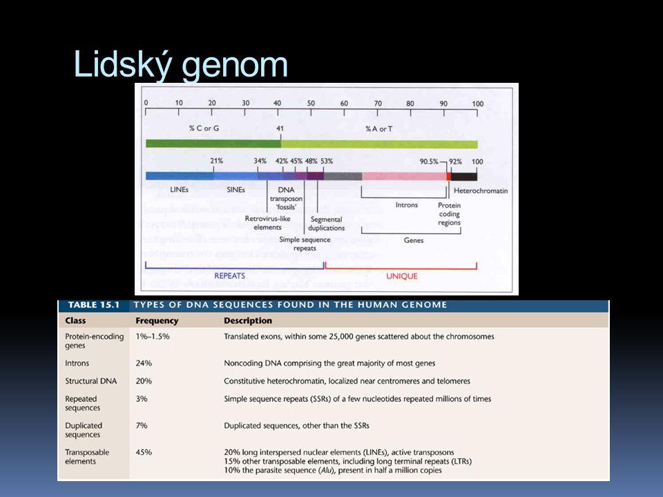 Rok 2010  1 200 genomů kompletních  1 000 of bacteria  80 archeal genomes  124 eucaryotic species