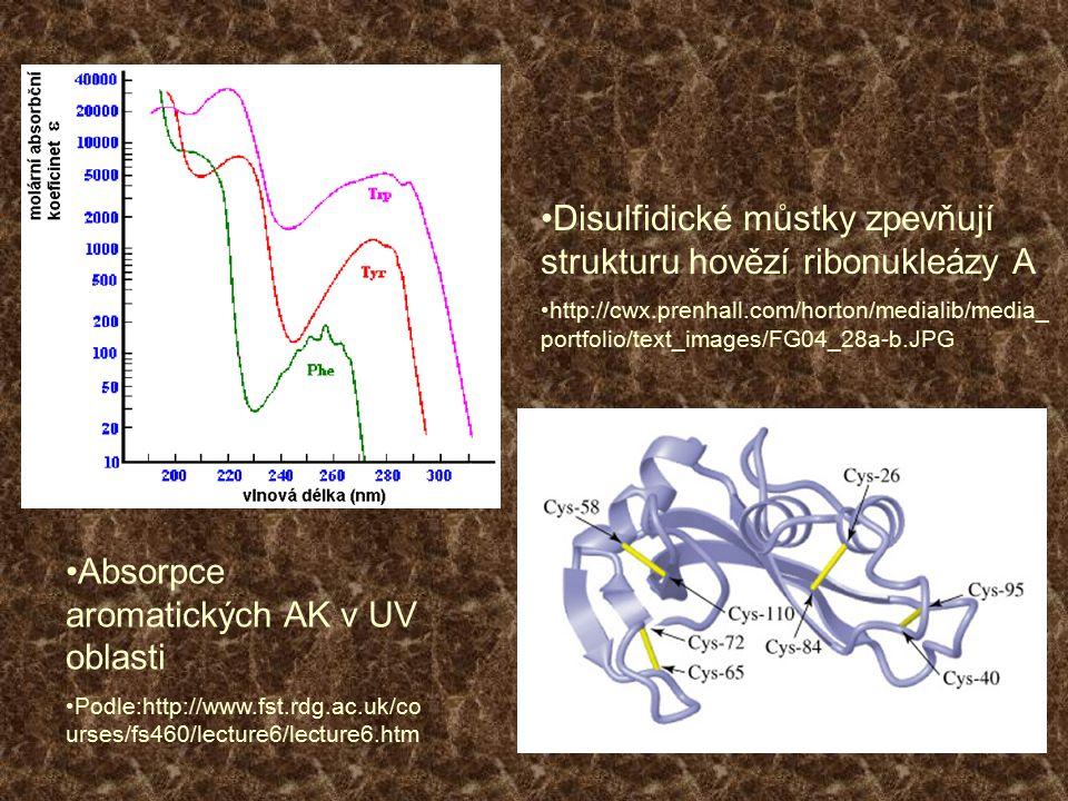 Disulfidické můstky zpevňují strukturu hovězí ribonukleázy A http://cwx.prenhall.com/horton/medialib/media_ portfolio/text_images/FG04_28a-b.JPG Absor