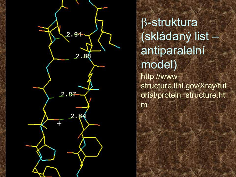  -struktura (skládaný list – antiparalelní model) http://www- structure.llnl.gov/Xray/tut orial/protein_structure.ht m