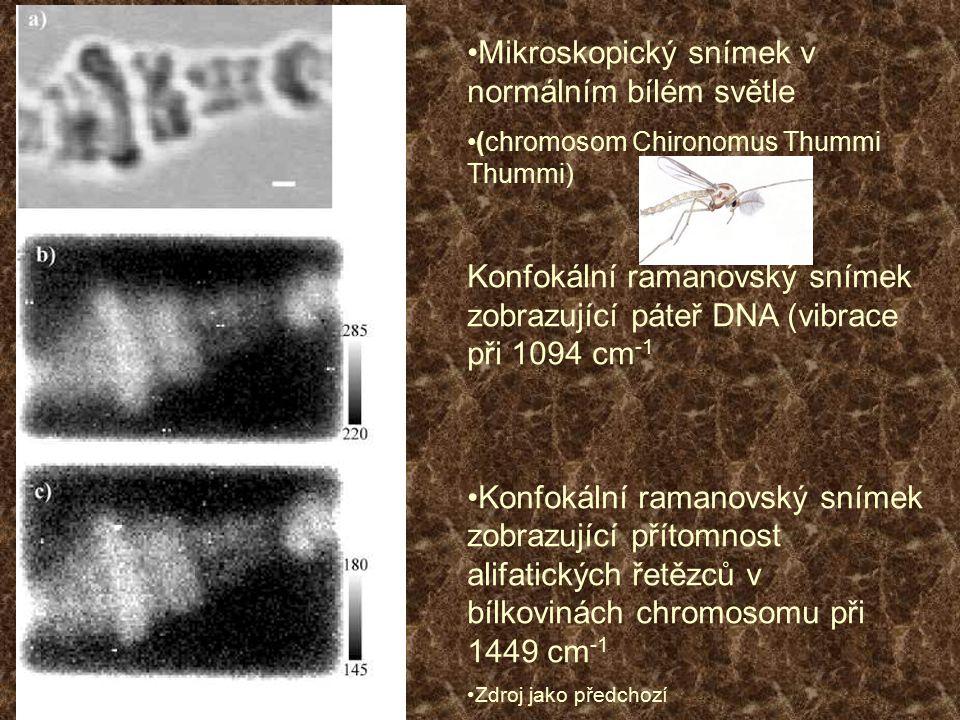 Mikroskopický snímek v normálním bílém světle (chromosom Chironomus Thummi Thummi) Konfokální ramanovský snímek zobrazující páteř DNA (vibrace při 109