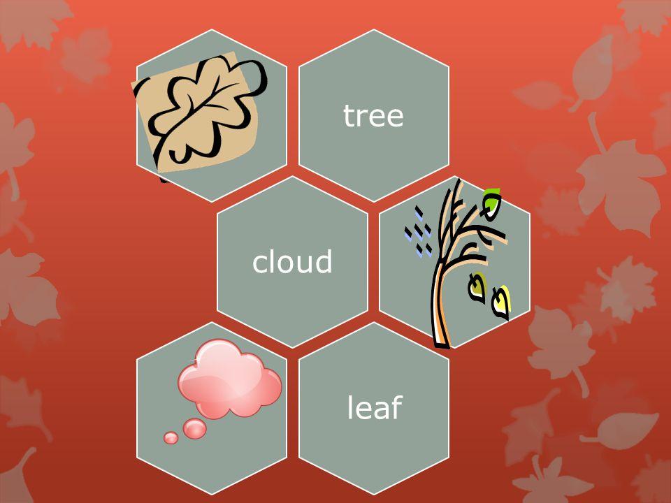 treecloudleaf