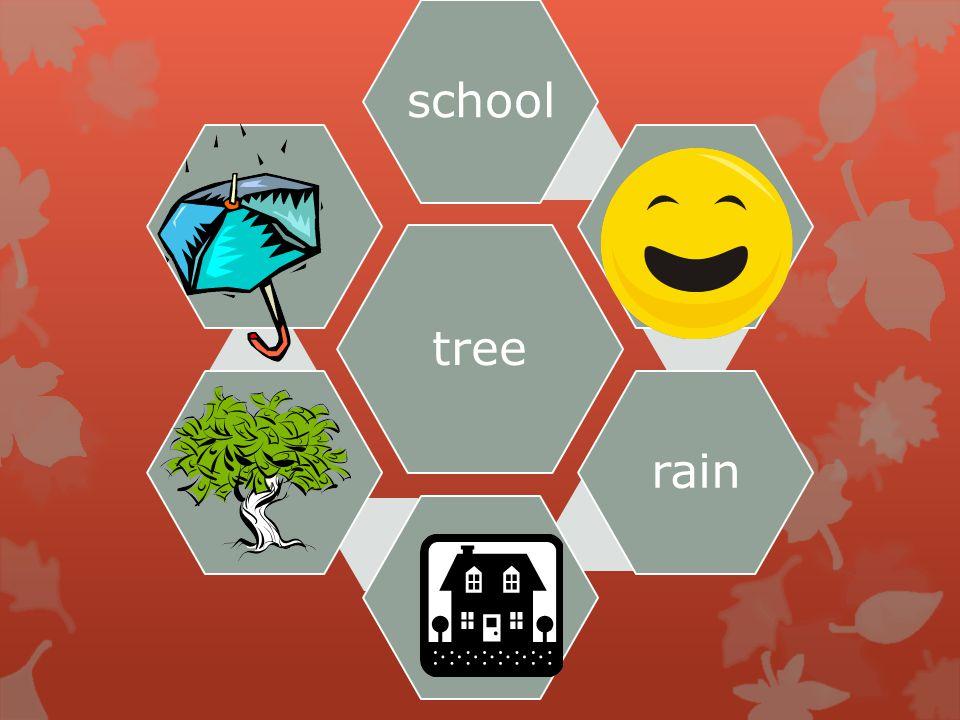 tree school.rain..