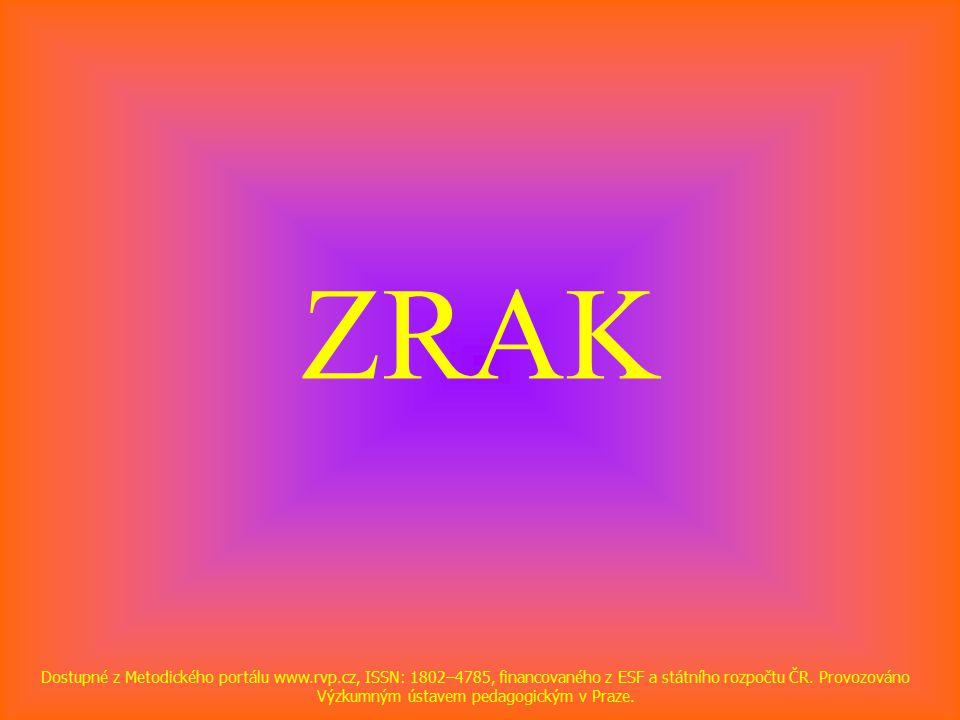 ZRAK Dostupné z Metodického portálu www.rvp.cz, ISSN: 1802–4785, financovaného z ESF a státního rozpočtu ČR.