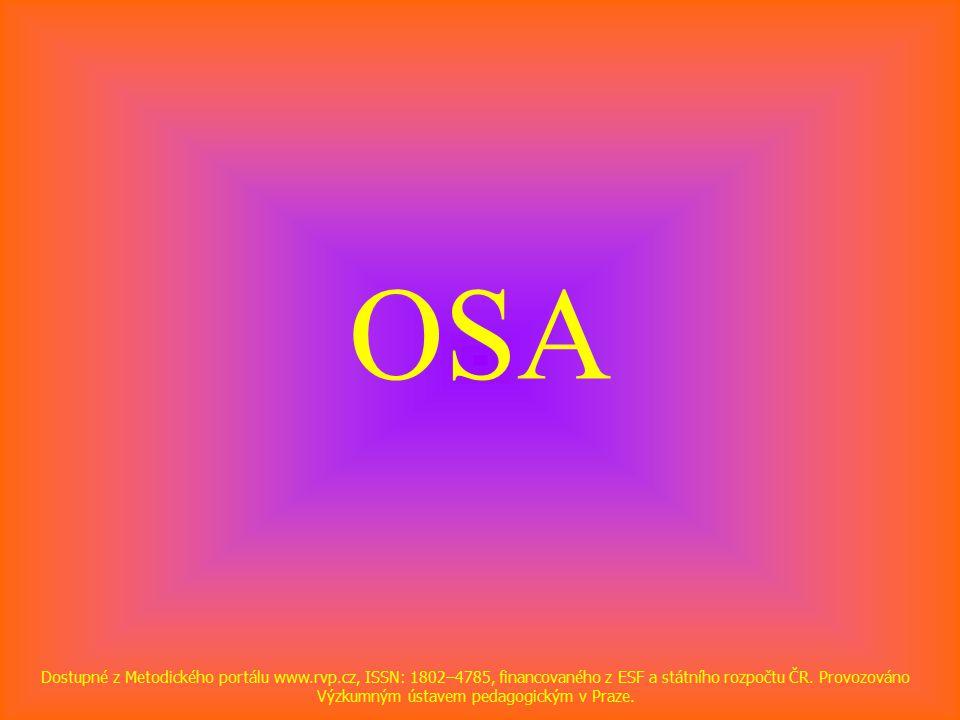 OSA Dostupné z Metodického portálu www.rvp.cz, ISSN: 1802–4785, financovaného z ESF a státního rozpočtu ČR.