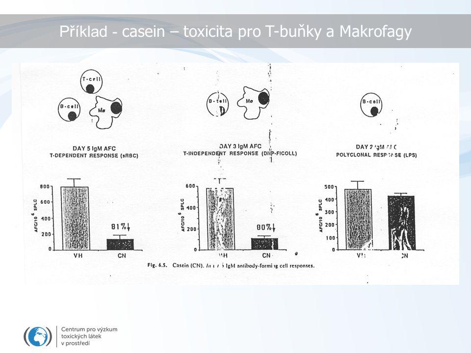 Příklad - casein – toxicita pro T-buňky a Makrofagy
