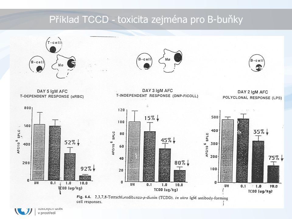 Příklad TCCD - toxicita zejména pro B-buňky