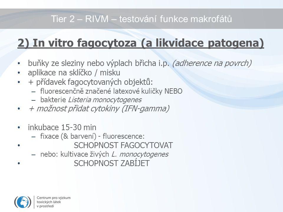 Tier 2 – RIVM – testování funkce makrofátů 2) In vitro fagocytoza (a likvidace patogena) buňky ze sleziny nebo výplach břicha i.p. (adherence na povrc