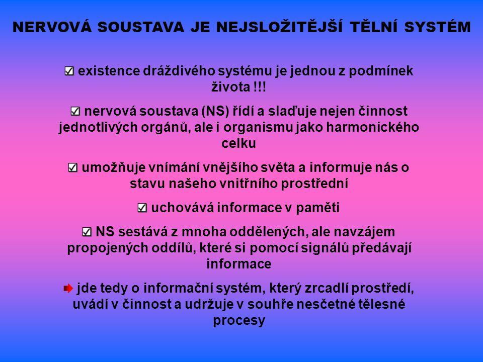 existence dráždivého systému je jednou z podmínek života !!! nervová soustava (NS) řídí a slaďuje nejen činnost jednotlivých orgánů, ale i organismu j
