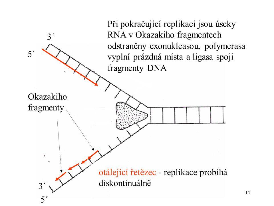 17 Okazakiho fragmenty 3´ 5´ 3´ Při pokračující replikaci jsou úseky RNA v Okazakiho fragmentech odstraněny exonukleasou, polymerasa vyplní prázdná mí
