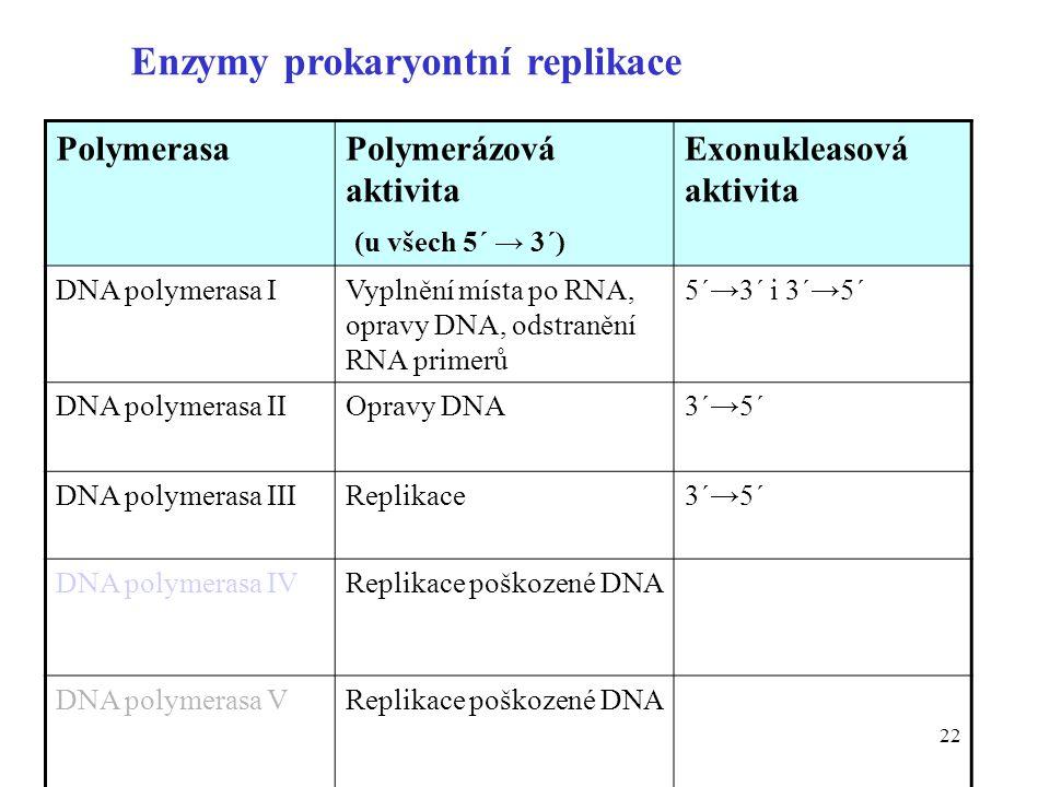22 Enzymy prokaryontní replikace PolymerasaPolymerázová aktivita (u všech 5´ → 3´) Exonukleasová aktivita DNA polymerasa IVyplnění místa po RNA, oprav
