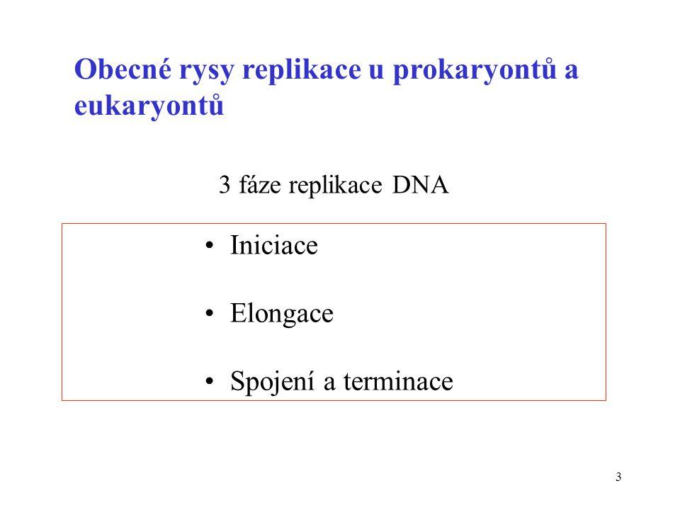 4 Látkové faktory potřebné k syntéze DNA dATP, dCTP, dGTP, dTTP Mg 2+ primer RNA templát DNA (mateřské vlákno)