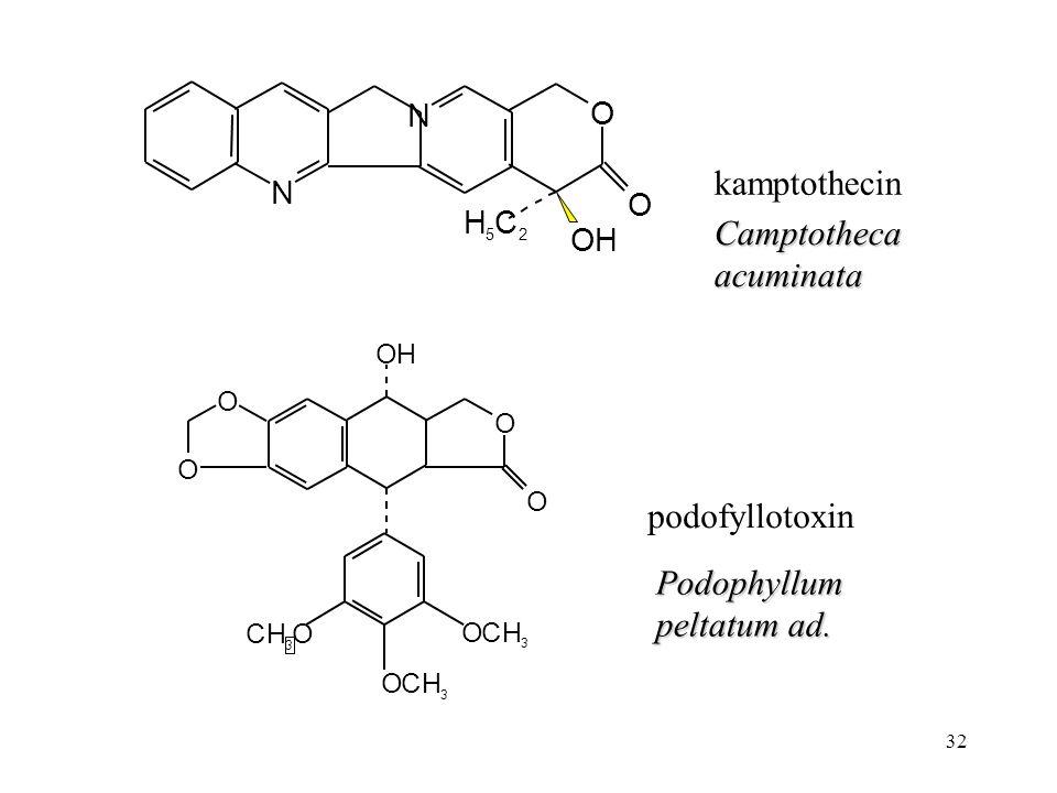 32 podofyllotoxin kamptothecin Camptotheca acuminata Podophyllum peltatum ad. N N O O OH H 5 C 2 OH O O CH 3 O OCH 3 OCH 3 O O