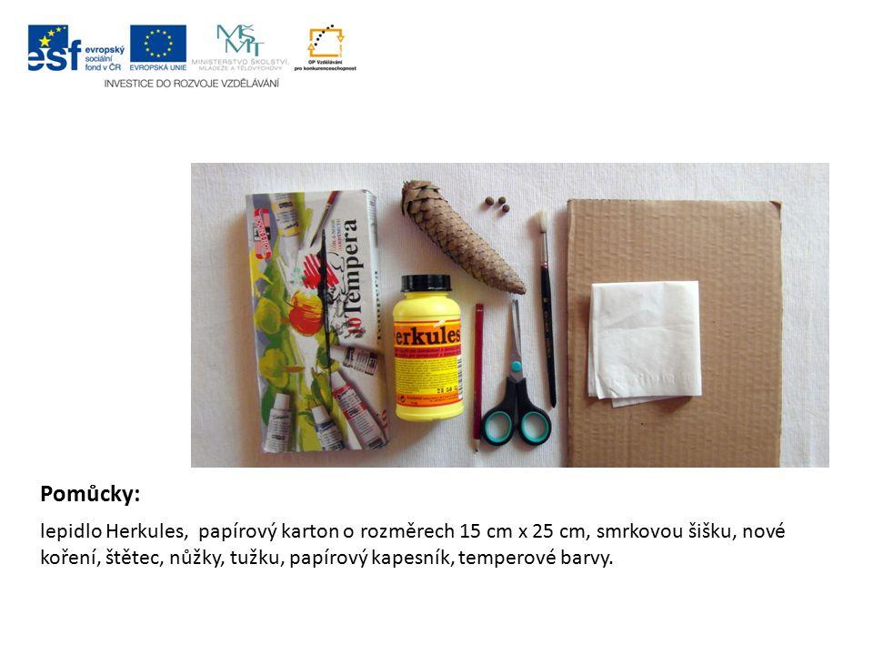 Pomůcky: lepidlo Herkules, papírový karton o rozměrech 15 cm x 25 cm, smrkovou šišku, nové koření, štětec, nůžky, tužku, papírový kapesník, temperové