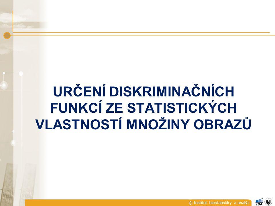 © Institut biostatistiky a analýz URČENÍ DISKRIMINAČNÍCH FUNKCÍ ZE STATISTICKÝCH VLASTNOSTÍ MNOŽINY OBRAZŮ