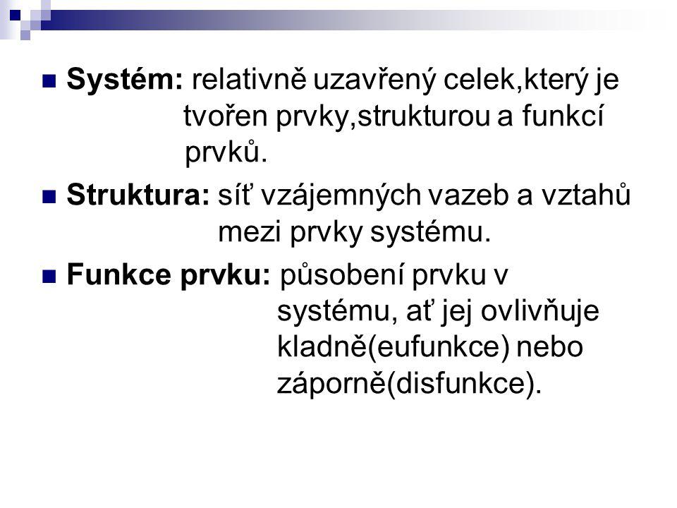 Systém: relativně uzavřený celek,který je tvořen prvky,strukturou a funkcí prvků. Struktura: síť vzájemných vazeb a vztahů mezi prvky systému. Funkce