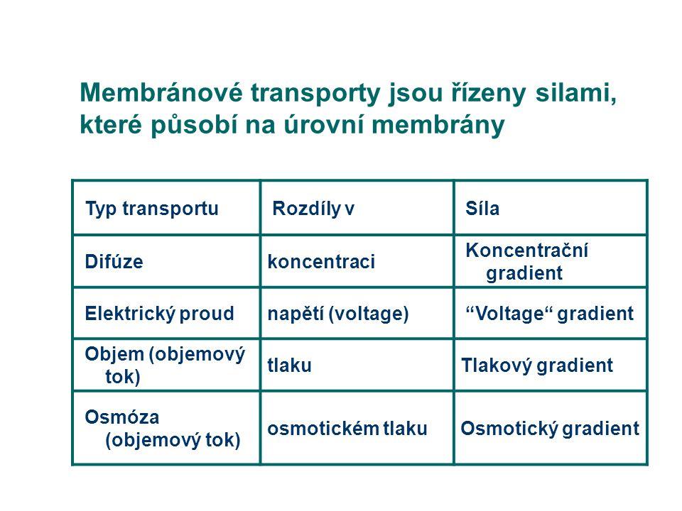 """Typ transportu Rozdíly v Síla Difúzekoncentraci Koncentrační gradient Elektrický proudnapětí (voltage) """"Voltage"""" gradient Objem (objemový tok) tlakuTl"""