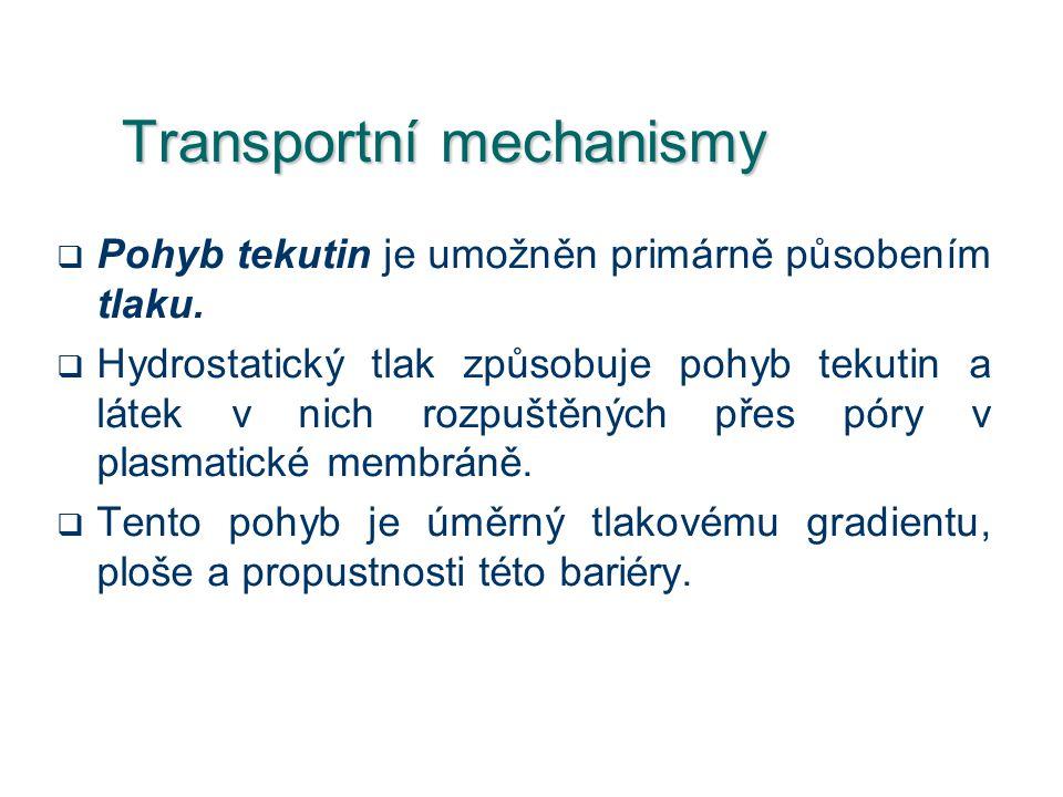Transportní mechanismy  Pohyb tekutin je umožněn primárně působením tlaku.  Hydrostatický tlak způsobuje pohyb tekutin a látek v nich rozpuštěných p