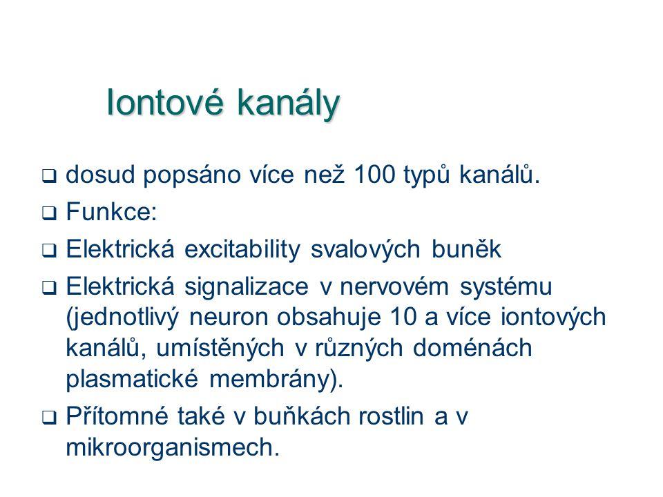 Iontové kanály  dosud popsáno více než 100 typů kanálů.  Funkce:  Elektrická excitability svalových buněk  Elektrická signalizace v nervovém systé
