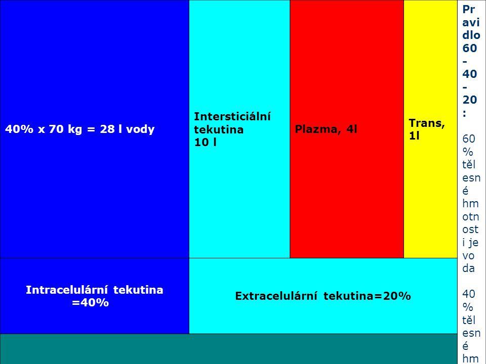 40% x 70 kg = 28 l vody Intersticiální tekutina 10 l Plazma, 4l Trans, 1l Pr avi dlo 60 - 40 - 20 : 60 % těl esn é hm otn ost i je vo da 40 % těl esn