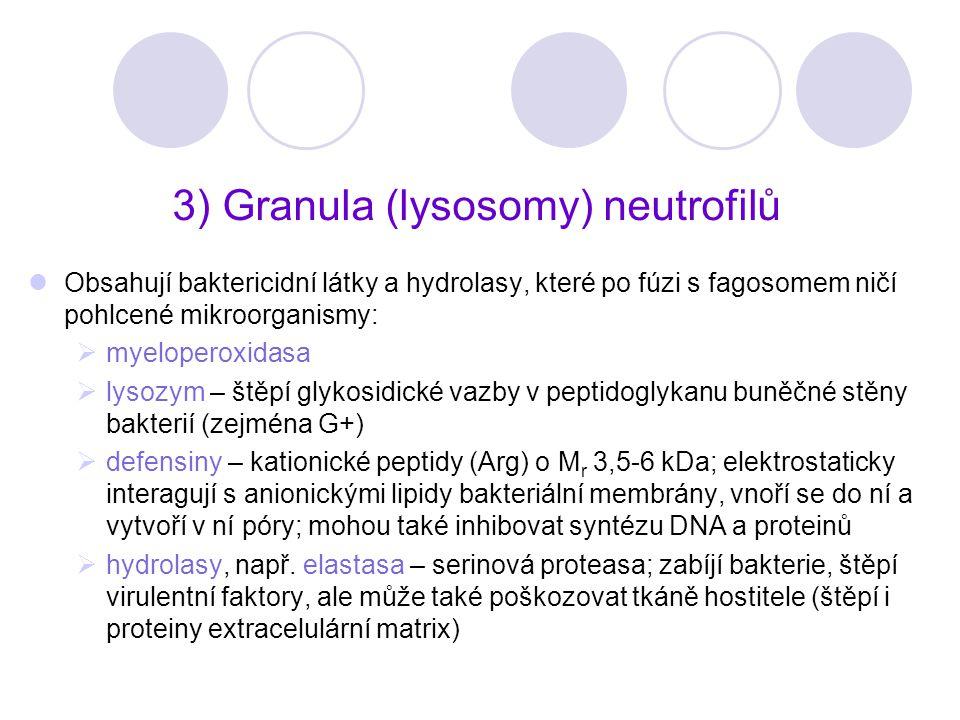 3) Granula (lysosomy) neutrofilů Obsahují baktericidní látky a hydrolasy, které po fúzi s fagosomem ničí pohlcené mikroorganismy:  myeloperoxidasa 