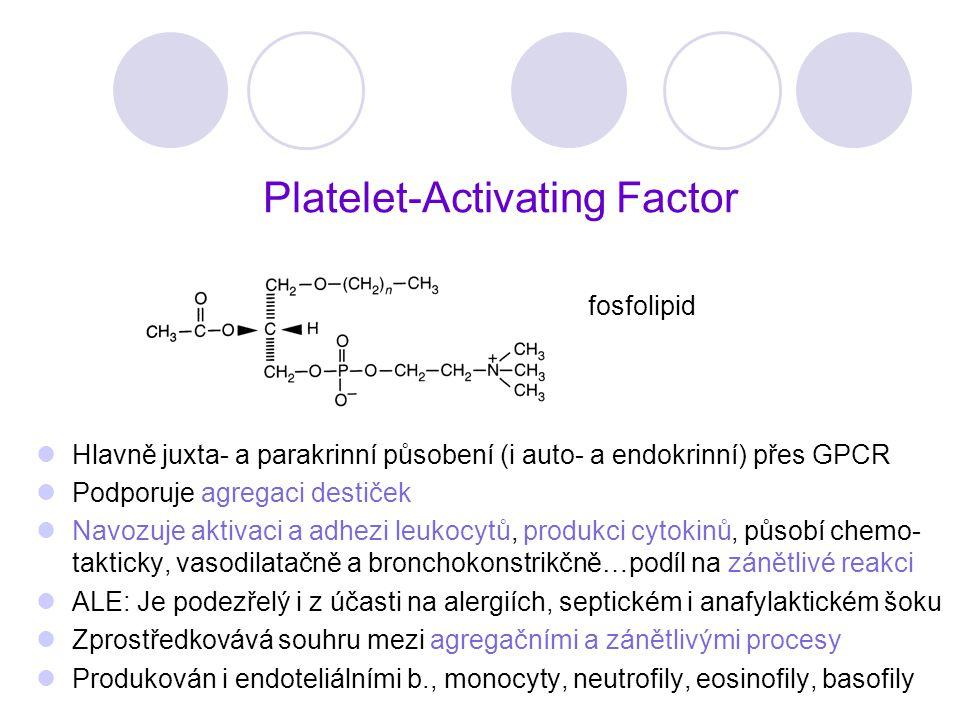 Platelet-Activating Factor Hlavně juxta- a parakrinní působení (i auto- a endokrinní) přes GPCR Podporuje agregaci destiček Navozuje aktivaci a adhezi