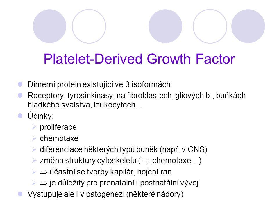 Platelet-Derived Growth Factor Dimerní protein existující ve 3 isoformách Receptory: tyrosinkinasy; na fibroblastech, gliových b., buňkách hladkého sv
