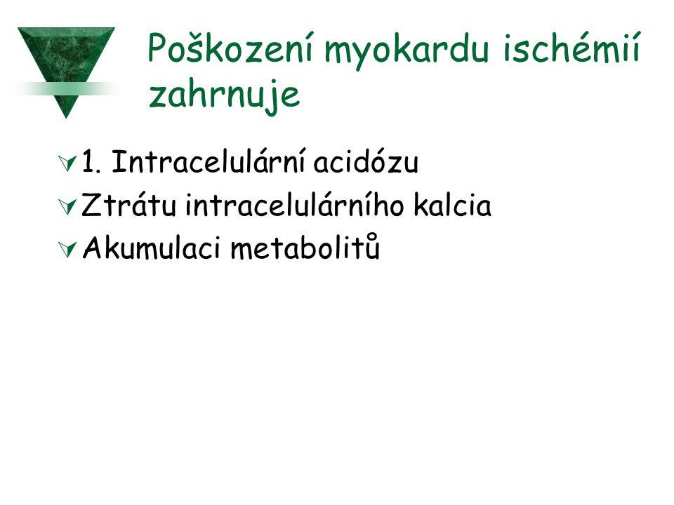 Poškození myokardu ischémií zahrnuje  1. Intracelulární acidózu  Ztrátu intracelulárního kalcia  Akumulaci metabolitů