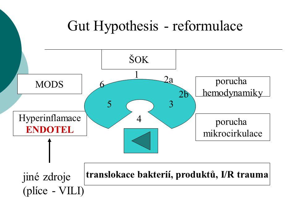ŠOK porucha mikrocirkulace porucha hemodynamiky Hyperinflamace ENDOTEL translokace bakterií, produktů, I/R trauma MODS 1 2a 2b 3 4 5 6 jiné zdroje (pl