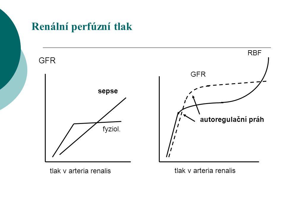 Renální perfúzní tlak GFR tlak v arteria renalis fyziol. sepse RBF GFR tlak v arteria renalis autoregulační práh