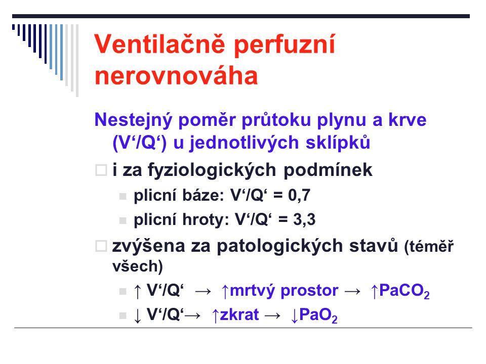 Ventilačně perfuzní nerovnováha Nestejný poměr průtoku plynu a krve (V'/Q') u jednotlivých sklípků  i za fyziologických podmínek plicní báze: V'/Q' =