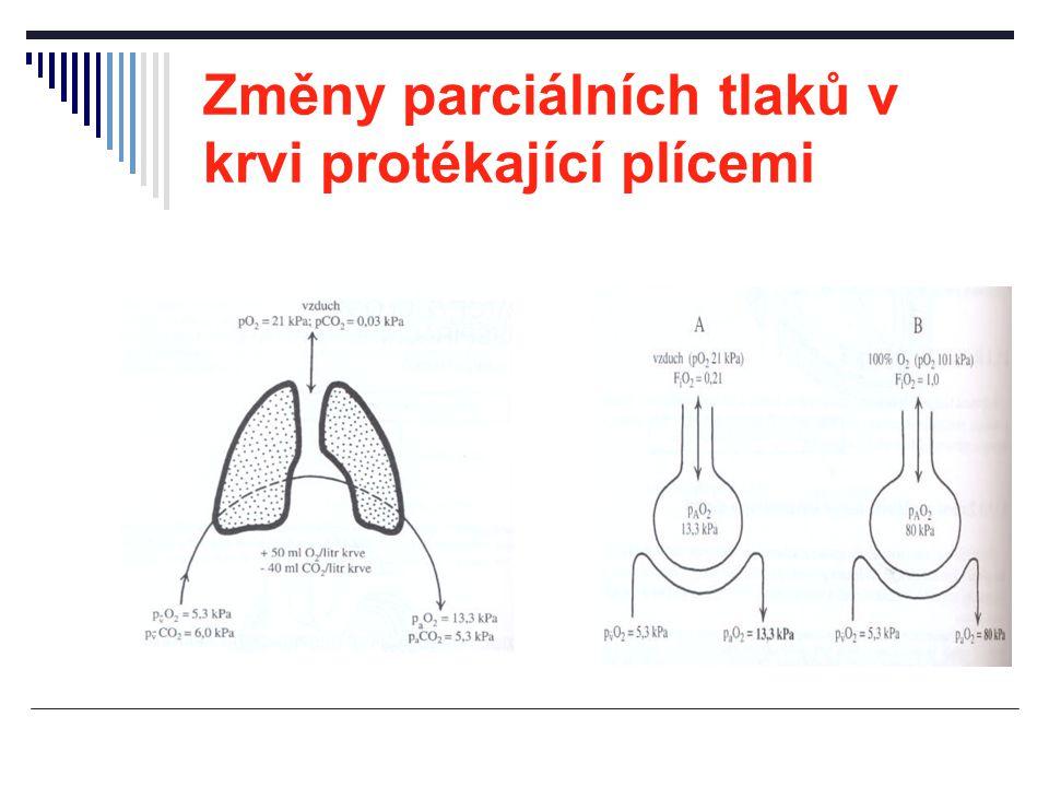 Alveolární ventilace V A = (V T -V D ) x f V T ….dechový objem (tidal volume) V D ….mrtvý prostor (dead volume) f ….dechová frekvence V A = (500ml-150ml) x 15/min=5250ml/min