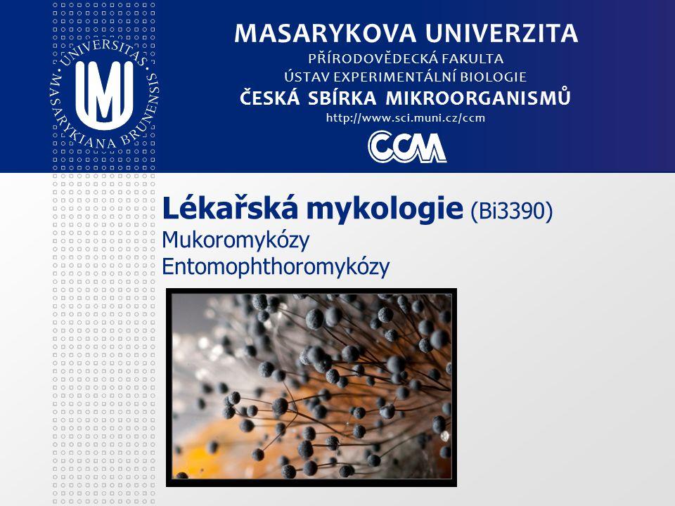 Lékařská mykologie (Bi3390) Mukoromykózy Entomophthoromykózy MASARYKOVA UNIVERZITA PŘÍRODOVĚDECKÁ FAKULTA ÚSTAV EXPERIMENTÁLNÍ BIOLOGIE ČESKÁ SBÍRKA M
