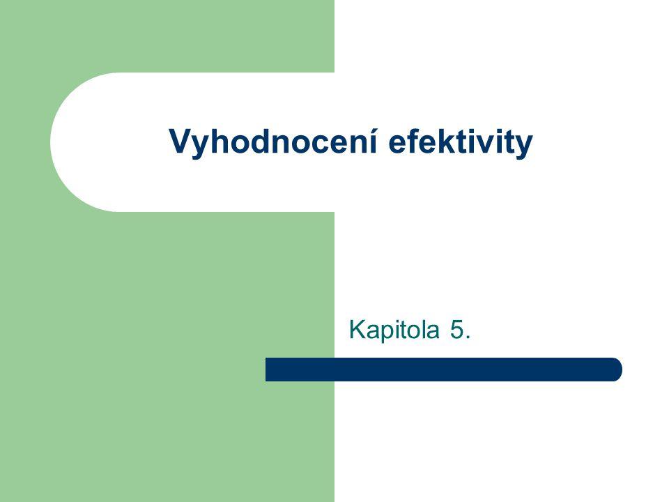 Vyhodnocení efektivity Kapitola 5.