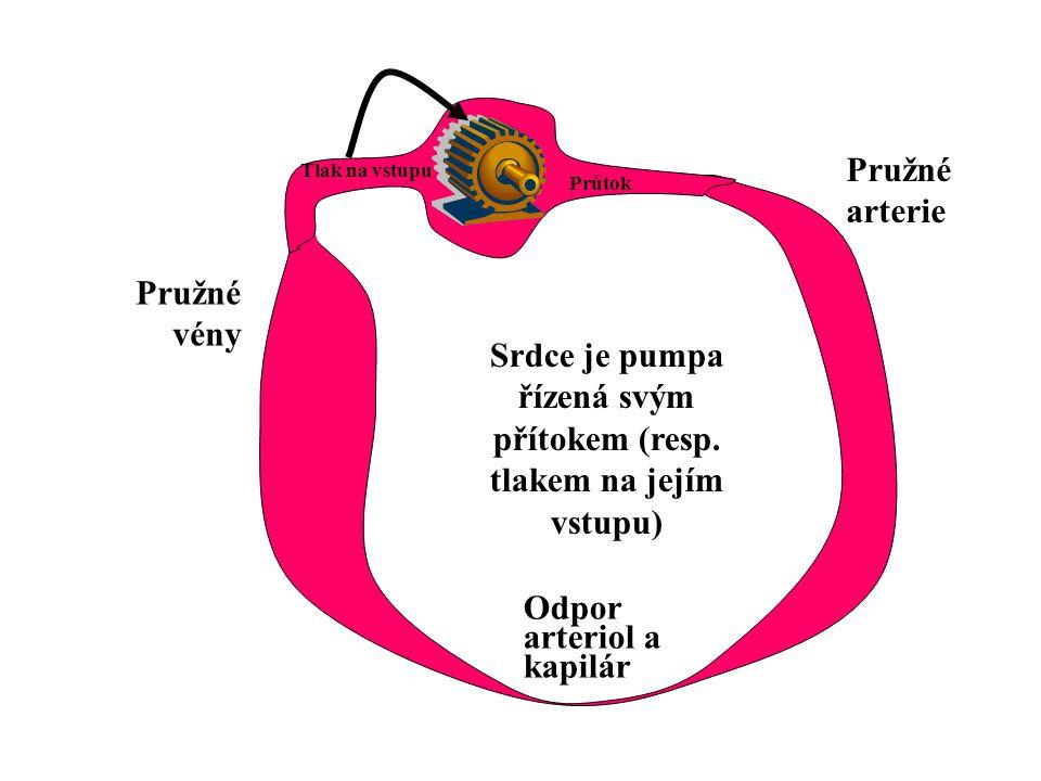 Srdce je pumpa řízená svým přítokem (resp. tlakem na jejím vstupu) Tlak na vstupu Průtok Odpor arteriol a kapilár Pružné arterie Pružné vény