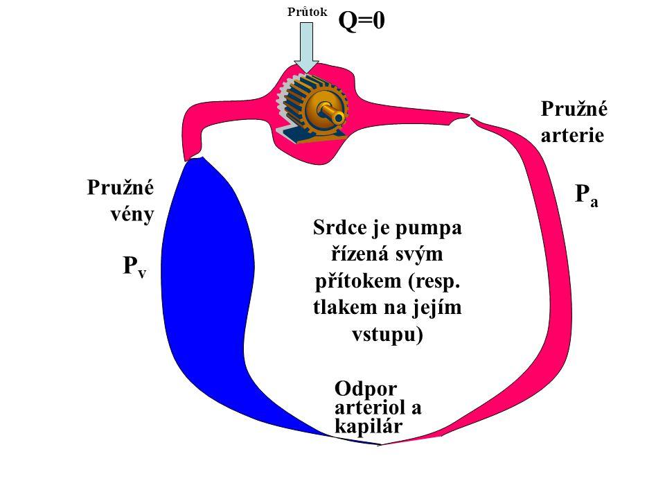 Srdce je pumpa řízená svým přítokem (resp. tlakem na jejím vstupu) Průtok Odpor arteriol a kapilár Pružné arterie Pružné vény PvPv PaPa Q=0