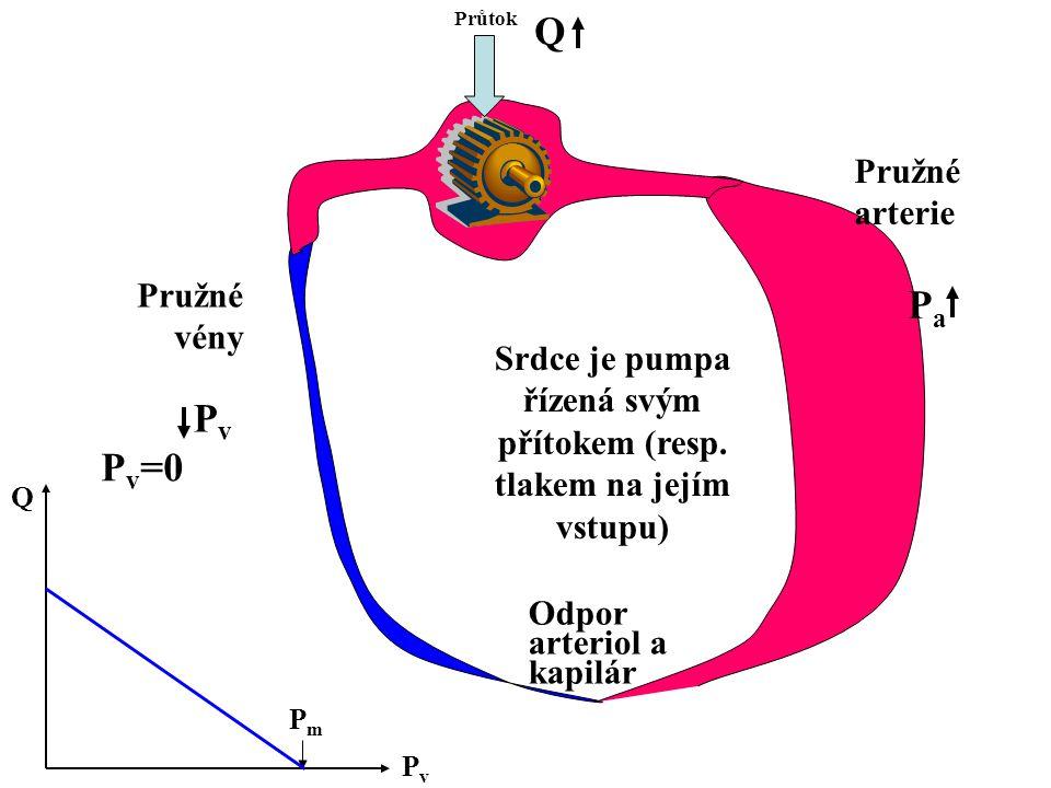 Srdce je pumpa řízená svým přítokem (resp. tlakem na jejím vstupu) Průtok Odpor arteriol a kapilár Pružné arterie Pružné vény PvPv PaPa PvPv Q PmPm Q