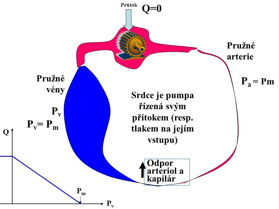 Srdce je pumpa řízená svým přítokem (resp. tlakem na jejím vstupu) Průtok Odpor arteriol a kapilár Pružné arterie Pružné vény PvPv Q=0 P v = P m PvPv