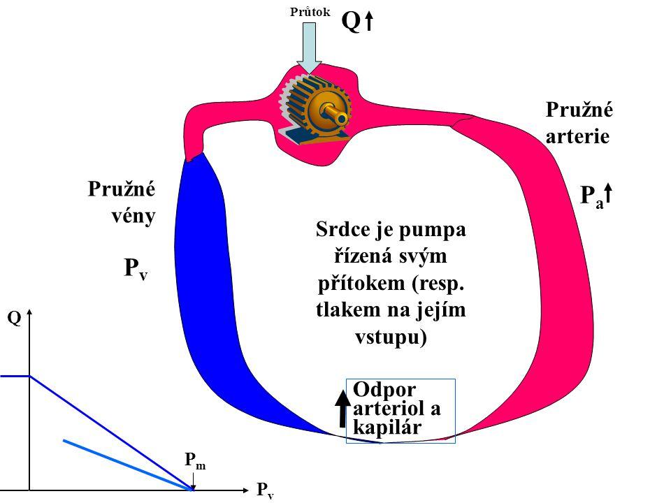 Srdce je pumpa řízená svým přítokem (resp. tlakem na jejím vstupu) Průtok Odpor arteriol a kapilár Pružné arterie Pružné vény PvPv PaPa Q PvPv Q PmPm