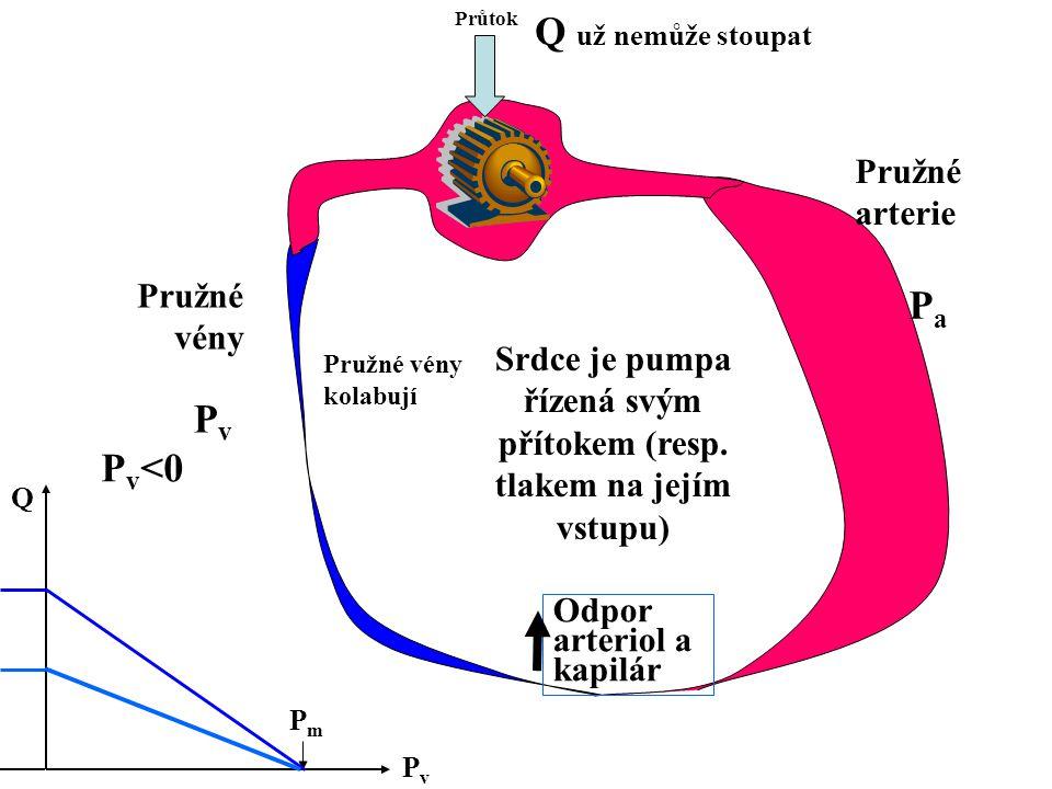 Srdce je pumpa řízená svým přítokem (resp. tlakem na jejím vstupu) Průtok Odpor arteriol a kapilár Pružné arterie Pružné vény PvPv PaPa PvPv Q PmPm P