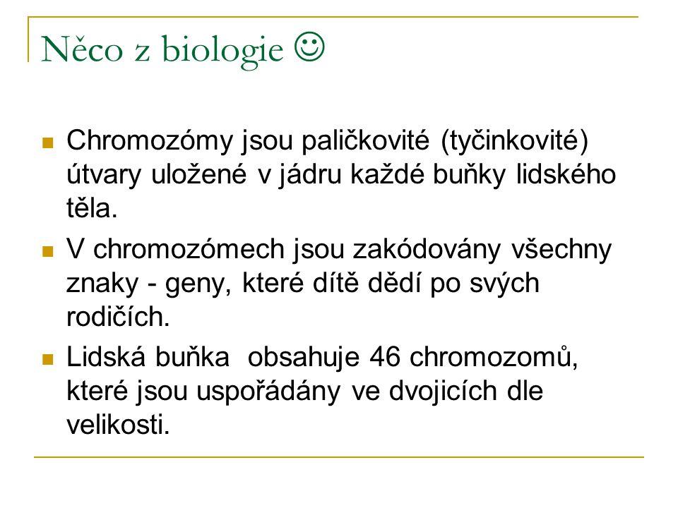 Něco z biologie Chromozómy jsou paličkovité (tyčinkovité) útvary uložené v jádru každé buňky lidského těla. V chromozómech jsou zakódovány všechny zna
