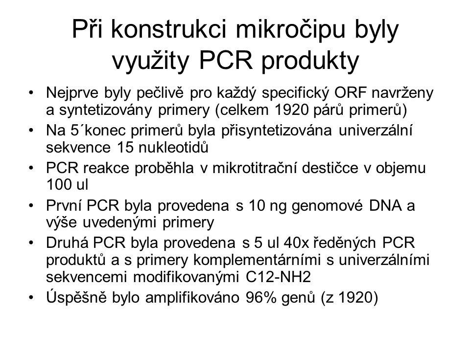 Při konstrukci mikročipu byly využity PCR produkty Nejprve byly pečlivě pro každý specifický ORF navrženy a syntetizovány primery (celkem 1920 párů primerů) Na 5´konec primerů byla přisyntetizována univerzální sekvence 15 nukleotidů PCR reakce proběhla v mikrotitrační destičce v objemu 100 ul První PCR byla provedena s 10 ng genomové DNA a výše uvedenými primery Druhá PCR byla provedena s 5 ul 40x ředěných PCR produktů a s primery komplementárními s univerzálními sekvencemi modifikovanými C12-NH2 Úspěšně bylo amplifikováno 96% genů (z 1920)