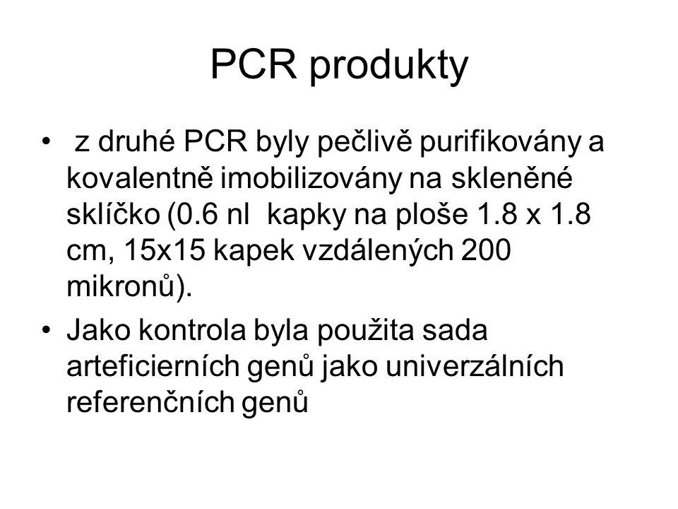 PCR produkty z druhé PCR byly pečlivě purifikovány a kovalentně imobilizovány na skleněné sklíčko (0.6 nl kapky na ploše 1.8 x 1.8 cm, 15x15 kapek vzd