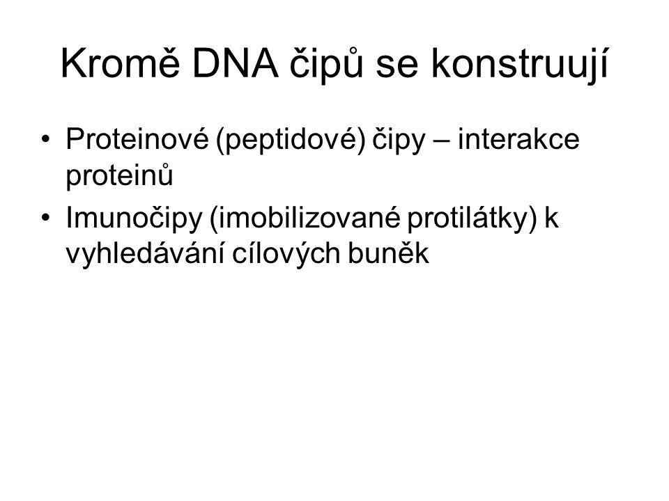 Kromě DNA čipů se konstruují Proteinové (peptidové) čipy – interakce proteinů Imunočipy (imobilizované protilátky) k vyhledávání cílových buněk
