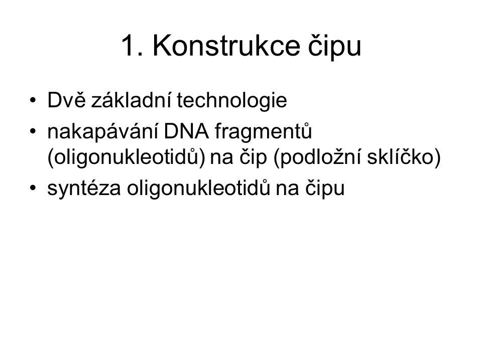 1. Konstrukce čipu Dvě základní technologie nakapávání DNA fragmentů (oligonukleotidů) na čip (podložní sklíčko) syntéza oligonukleotidů na čipu