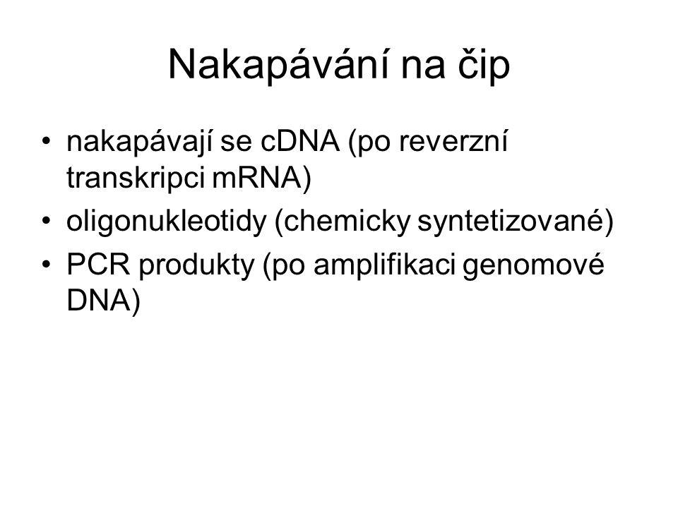 Nakapávání na čip nakapávají se cDNA (po reverzní transkripci mRNA) oligonukleotidy (chemicky syntetizované) PCR produkty (po amplifikaci genomové DNA