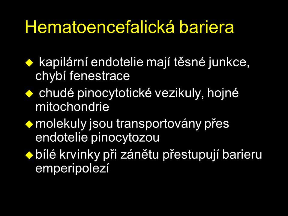 Hematoencefalická bariera u kapilární endotelie mají těsné junkce, chybí fenestrace u chudé pinocytotické vezikuly, hojné mitochondrie u molekuly jsou transportovány přes endotelie pinocytozou u bílé krvinky při zánětu přestupují barieru emperipolezí