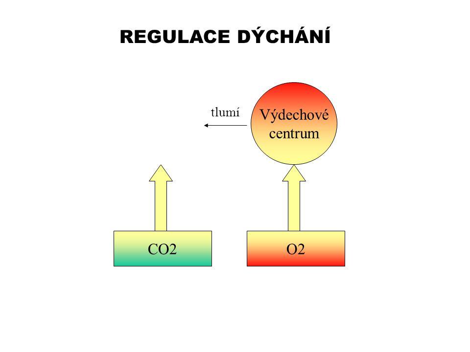 REGULACE DÝCHÁNÍ Nádechové centrum CO2O2 Výdechové centrum tlumí