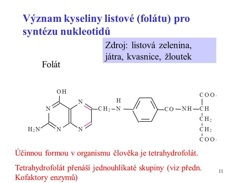 11 Význam kyseliny listové (folátu) pro syntézu nukleotidů Folát Zdroj: listová zelenina, játra, kvasnice, žloutek N N OH N N CH 2 N H 2 N CO NHCH CH