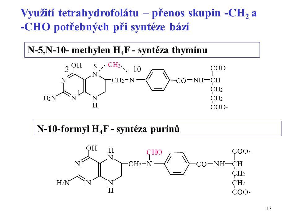 13 N N OH NH 2 N CO NHCH CH 2 CH 2 COO - COO - CH 2 N N H CH 2 N-5,N-10- methylen H 4 F - syntéza thyminu N N OH NH 2 N CO NHCH CH 2 CH 2 COO - COO -